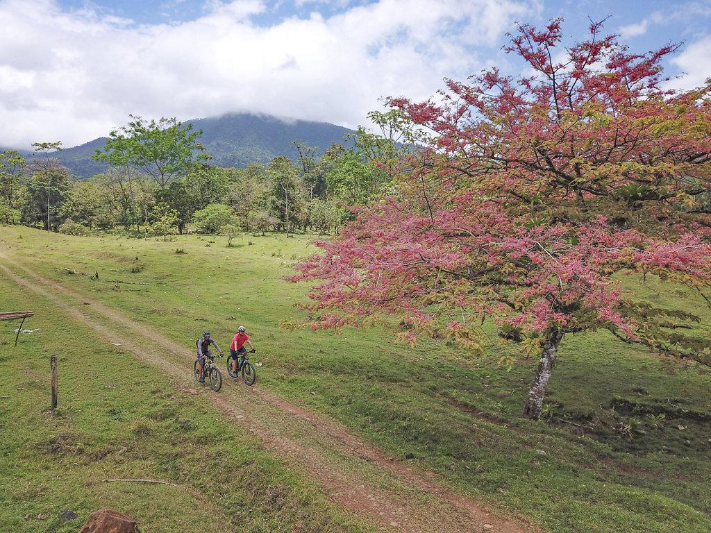 Fahrrad-Costa-Rica.jpg